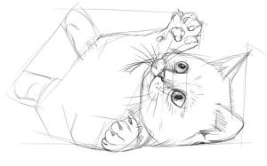 Как-нарисовать-котёнка-карандашом-поэтапно-3