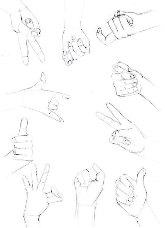 Как нарисовать руку человека