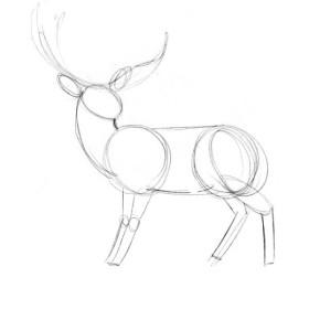 Как-нарисовать-оленя-карандашом-поэтапно-2