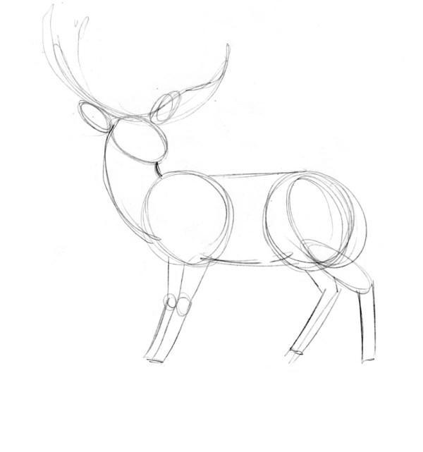 Рисуем олень поэтапно