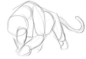 Как-нарисовать-пантеру-карандашом-поэтапно-2