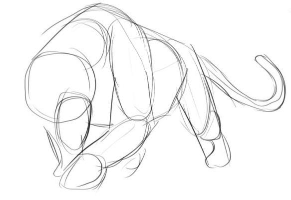 Как нарисовать пантеру карандашом поэтапно