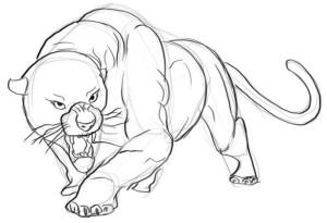 Как-нарисовать-пантеру-карандашом-поэтапно-4