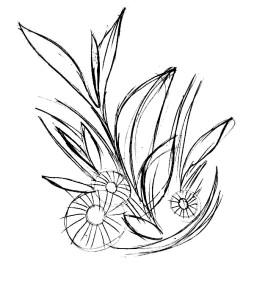 Как-нарисовать-ромашку-карандашом-3