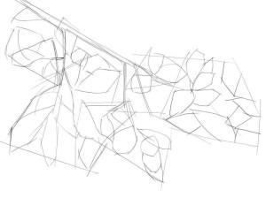 Как нарисовать ветку сакуры на стене поэтапно