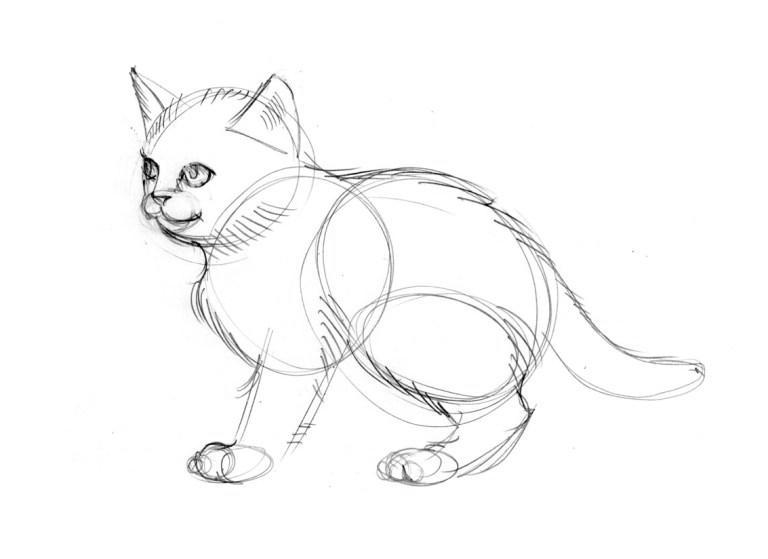 Уши для кота