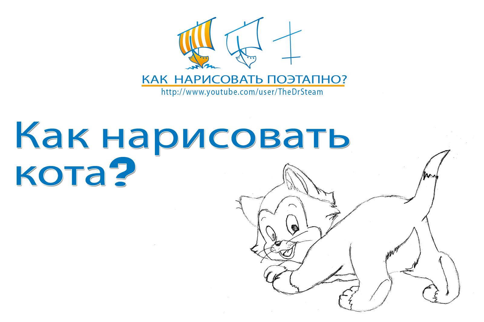 Видео: как нарисовать кота