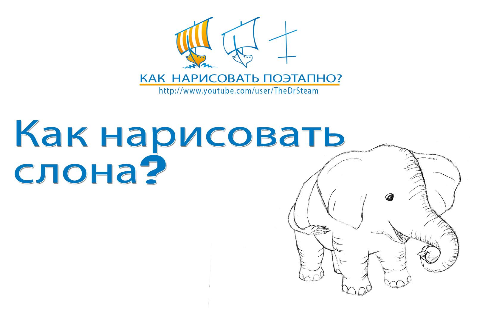 Видео: как нарисовать слона