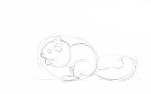 Как-нарисовать-бурундука-карандашом-поэтапно-2