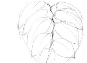 Как-нарисовать-капли-карандашом-поэтапно-2