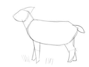 Как-нарисовать-козу-карандашом-поэтапно-1 (1)