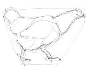 Нарисовать курицу и цыплят