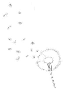 Как-нарисовать-одуванчик-карандашом-поэтапно-2