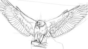 Как-нарисовать-орла-карандашом-3