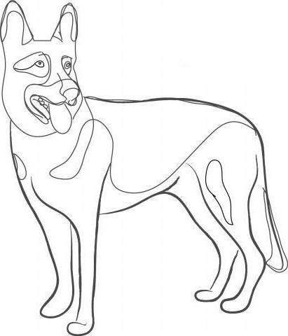 Как нарисовать овчарку?