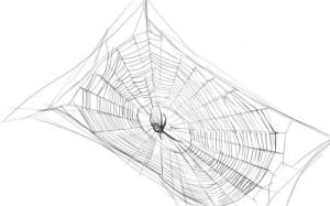 Как-нарисовать-паутину-карандашом-поэтапно-4