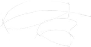Как-нарисовать-перья-карандашом-поэтапно-1