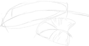 Как-нарисовать-перья-карандашом-поэтапно-2