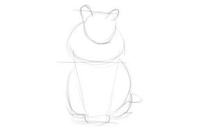 Как-нарисовать-шерсть-карандашом-поэтапно-1