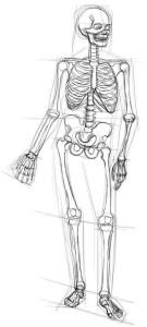 Как-нарисовать-скелет-карандашом-поэтапно-3