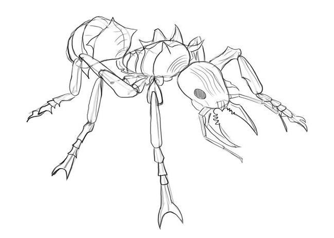 Как нарисовать муравья?