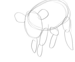 как-нарисовать-свинью-1