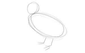 как-нарисовать-утенка-1