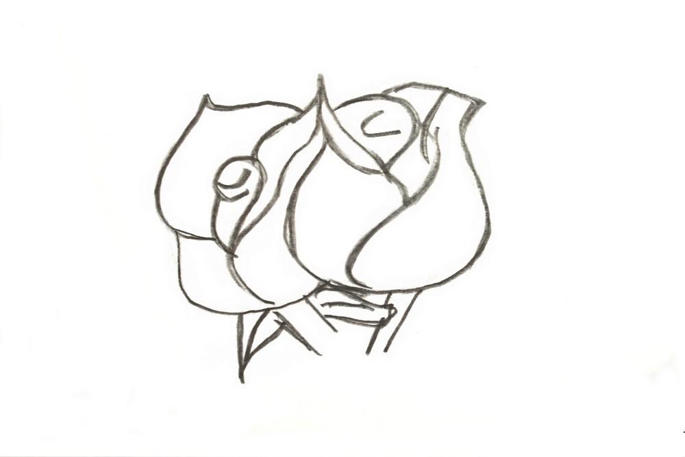 Как нарисовать бутон розы