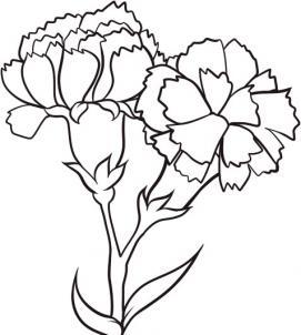 Как нарисовать гвоздики?