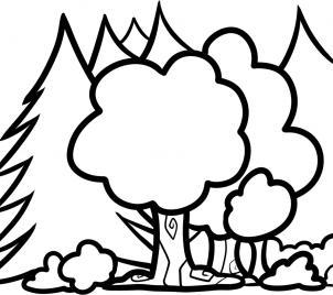 Как нарисовать лес для детей