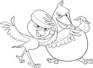 Как нарисовать Педро и Нико из Рио