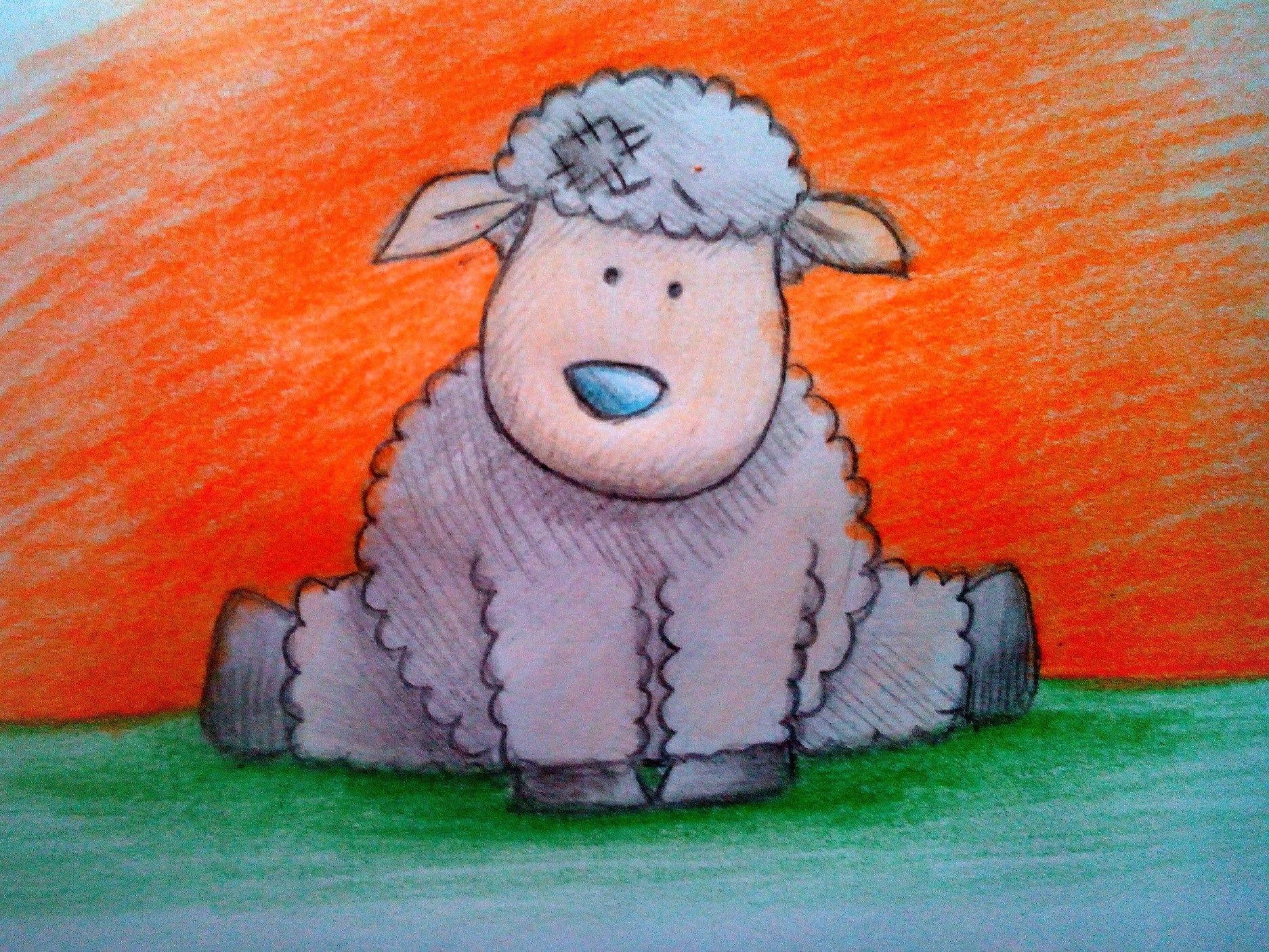 Как нарисовать овечку цветными карандашами поэтапно?