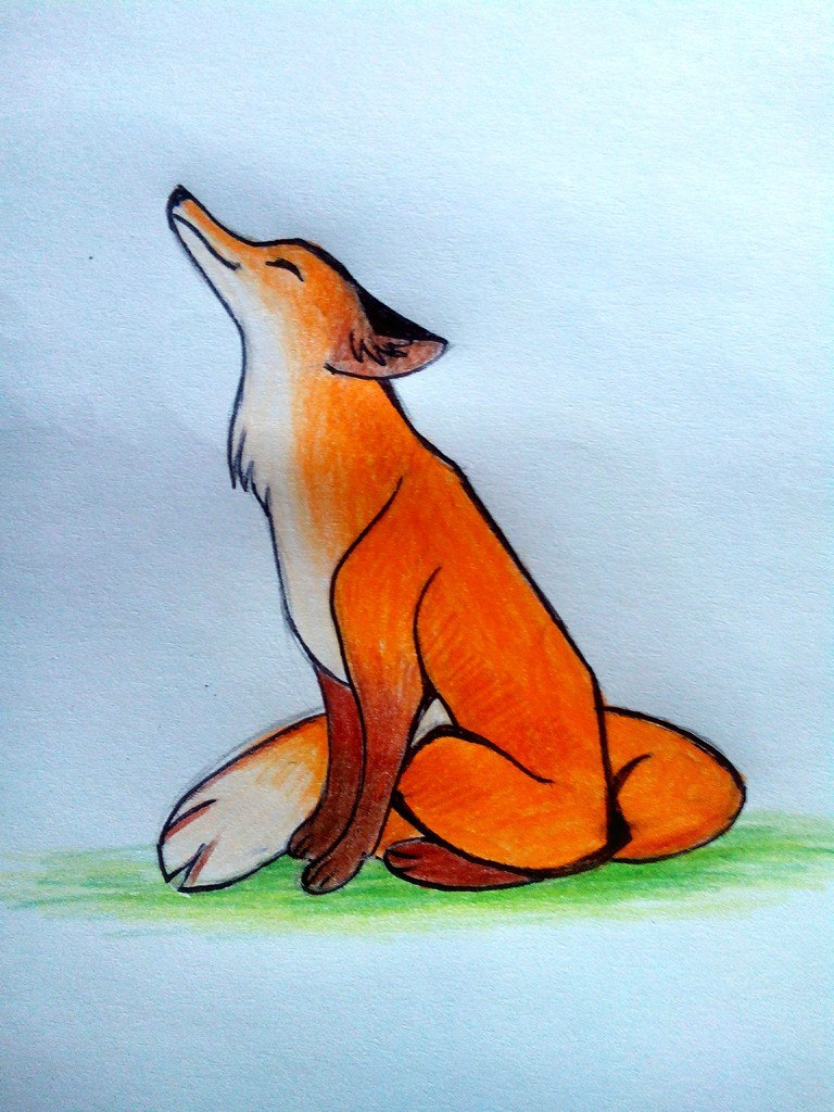 Как нарисовать лису цветными карандашами поэтапно