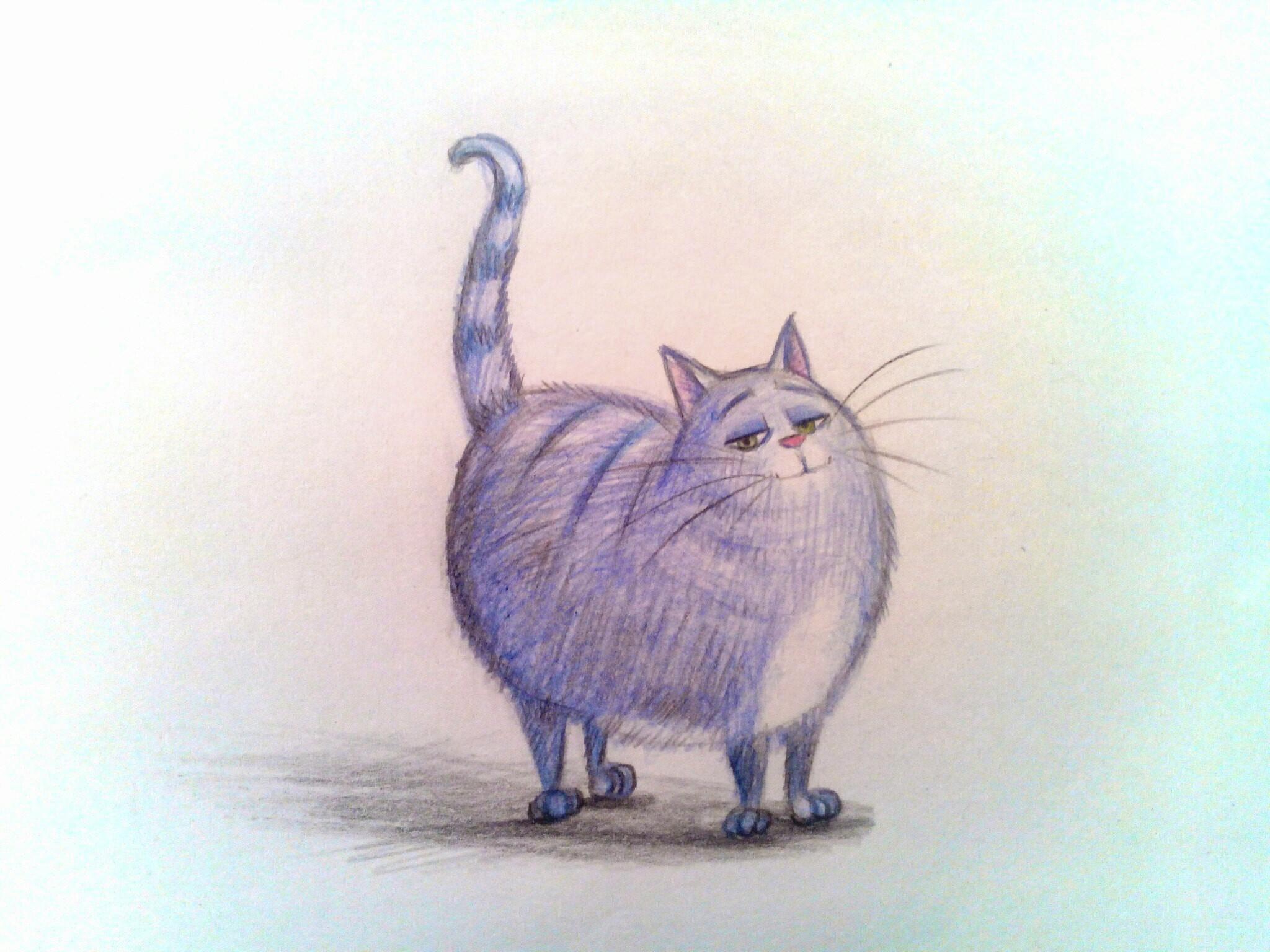 Как нарисовать кошку Хлою из мультфильма «Тайная жизнь домашних животных»