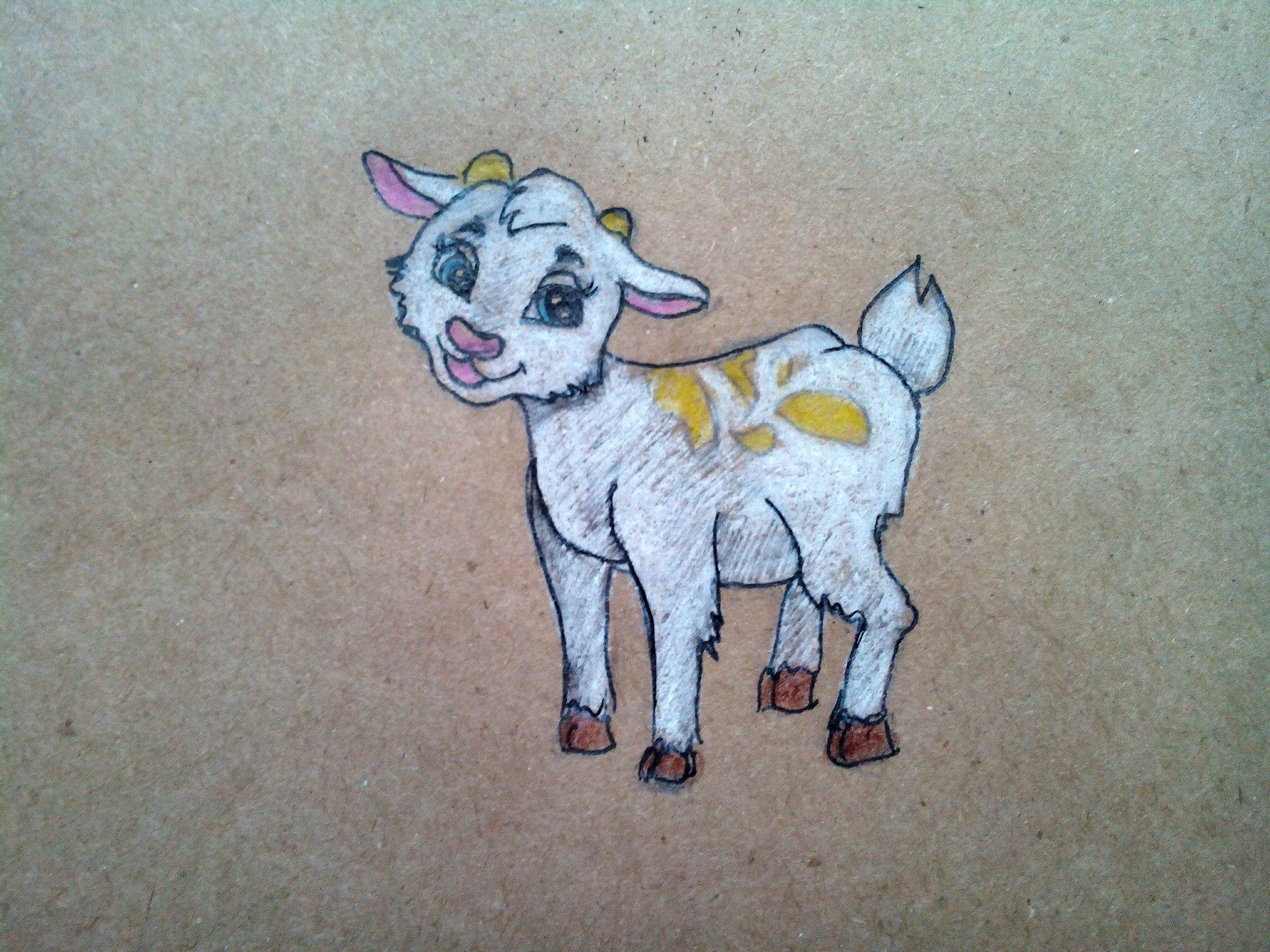 Как нарисовать козленка карандашом поэтапно