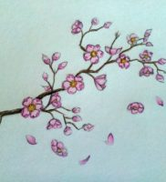 Как нарисовать сакуру карандашом поэтапно