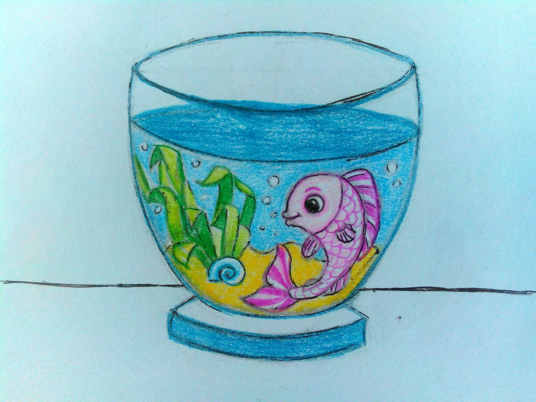 Как нарисовать аквариум карандашом поэтапно?
