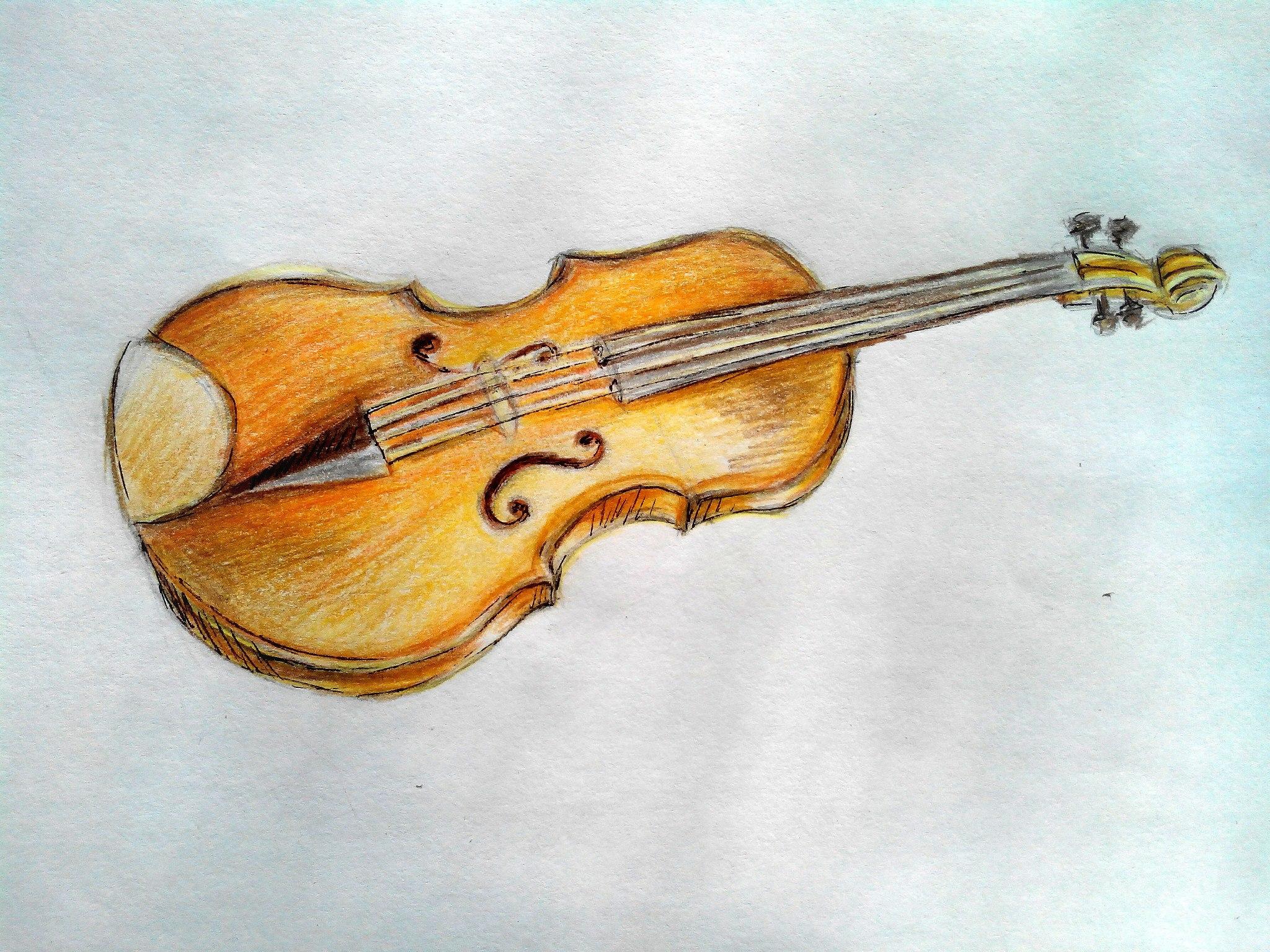 Как нарисовать скрипку карандашом поэтапно?