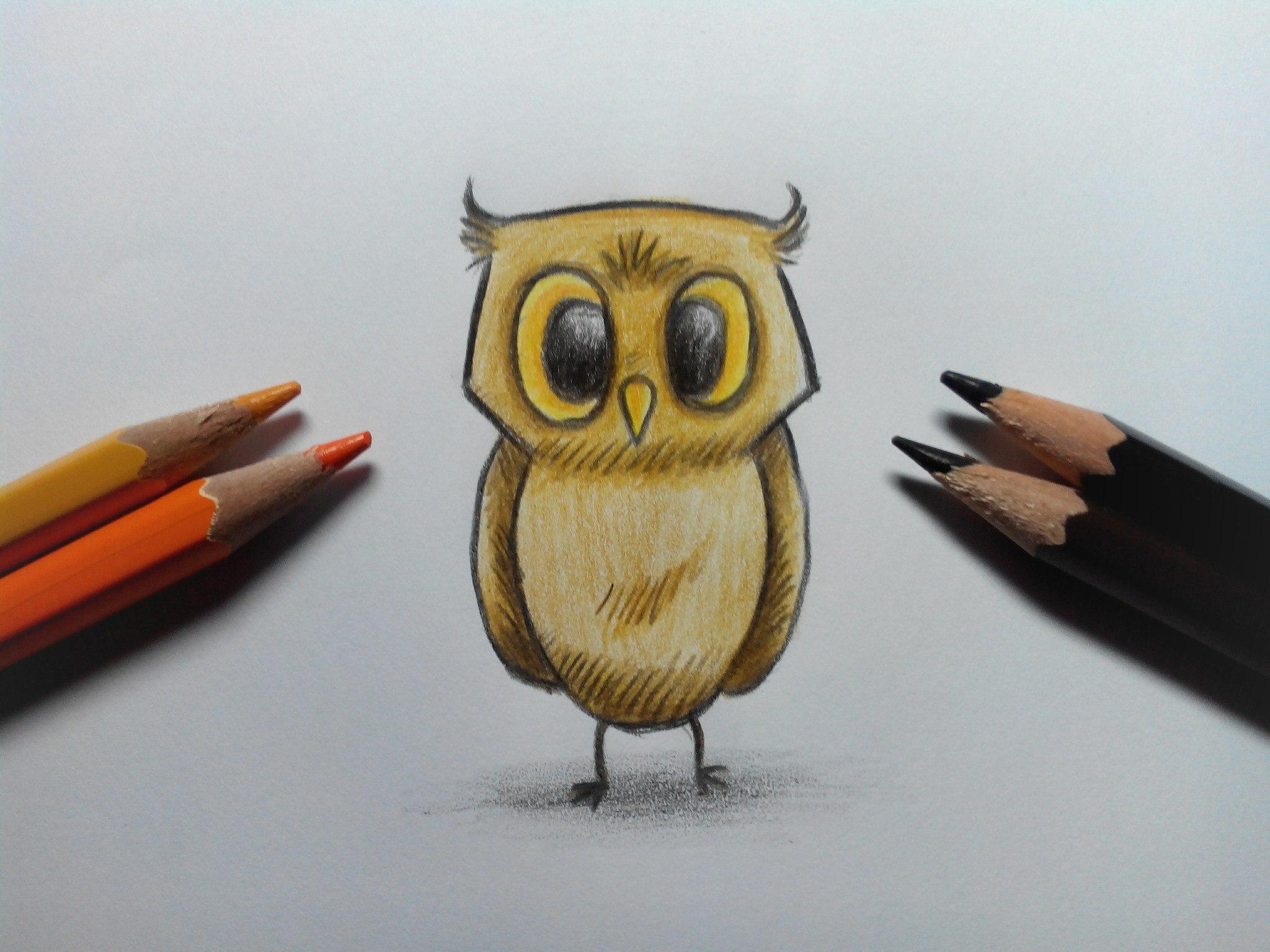 Как нарисовать сову карандашом поэтапно?