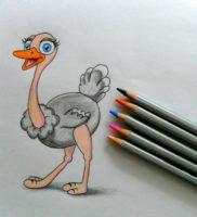 Как нарисовать страуса карандашом поэтапно