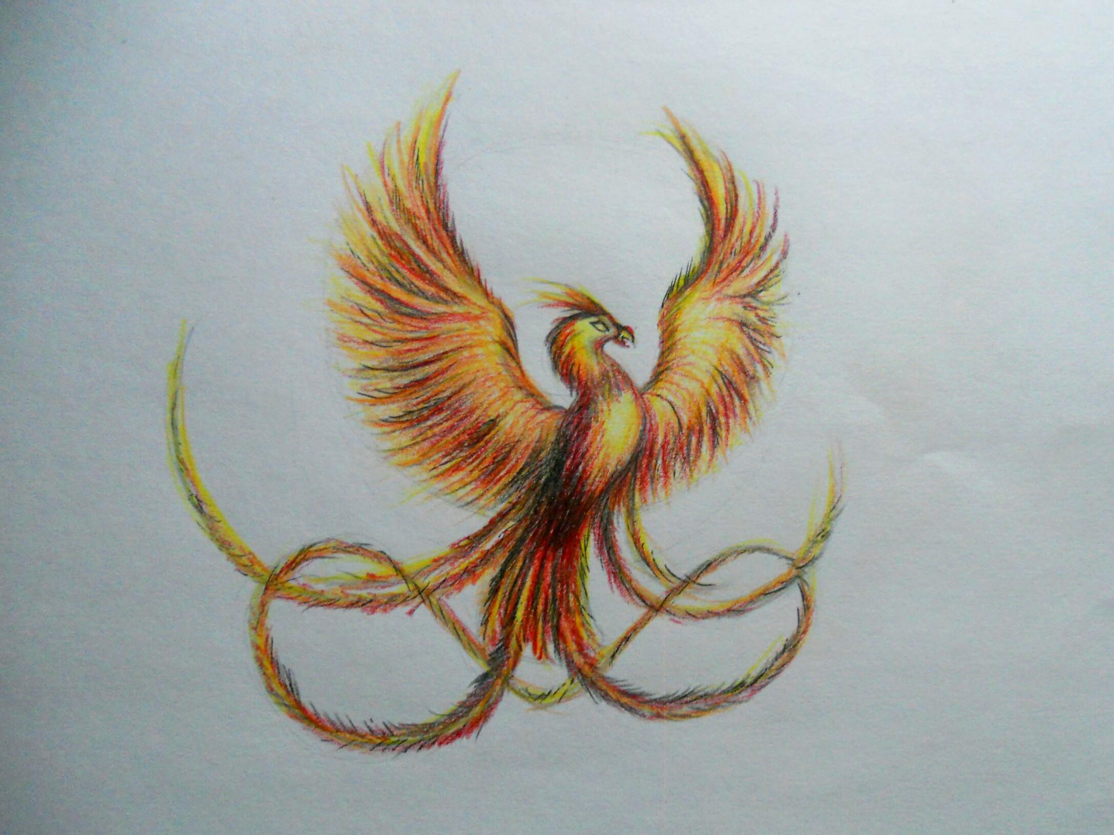 Как нарисовать феникса карандашом поэтапно?