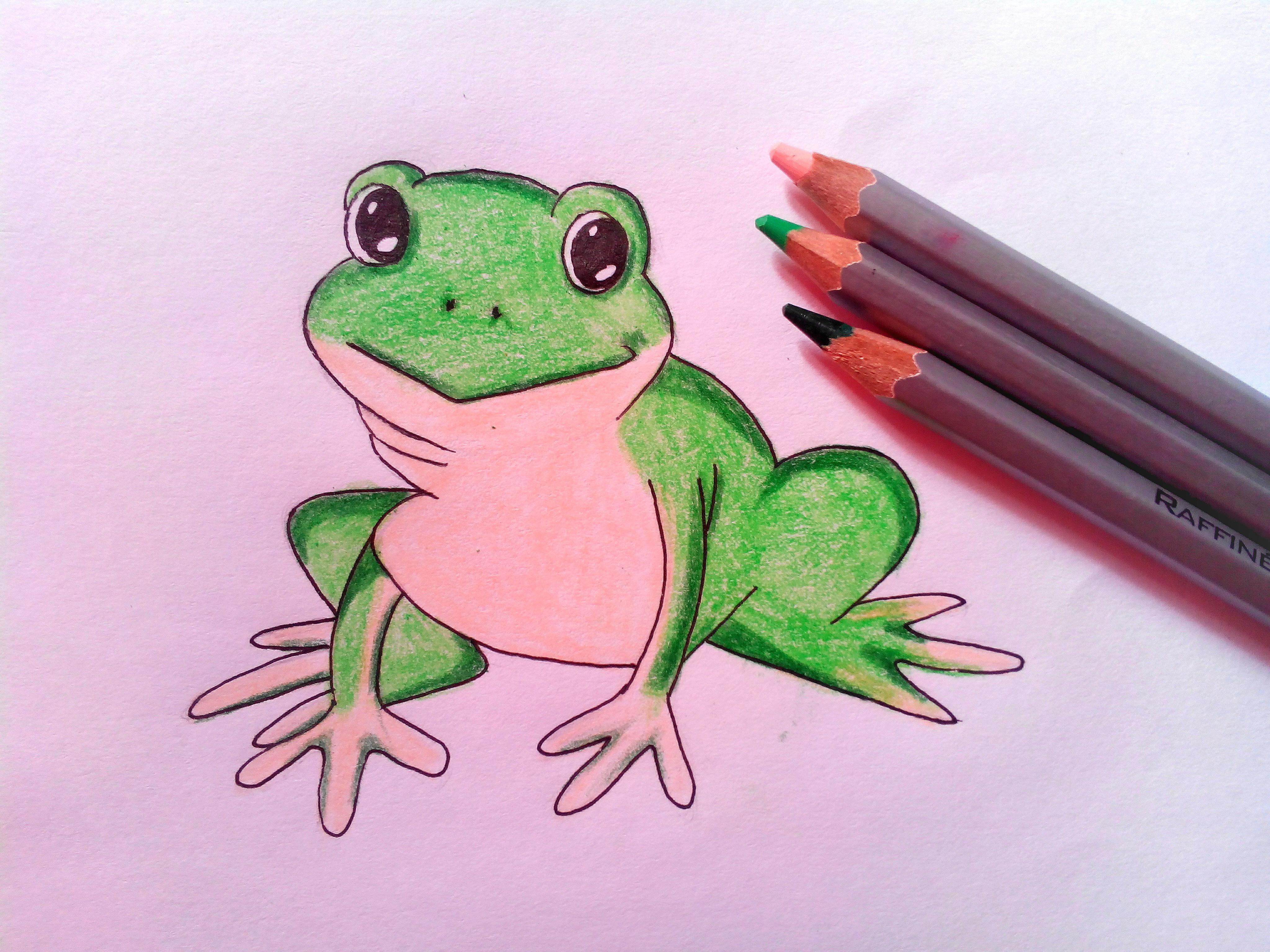 Как нарисовать жабу карандашом поэтапно?