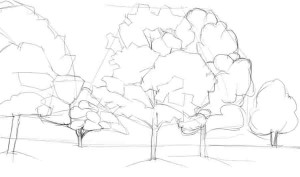Как-нарисовать-клен-карандашом-поэтапно-2