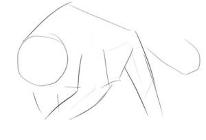 Как-нарисовать-пантеру-карандашом-поэтапно-1