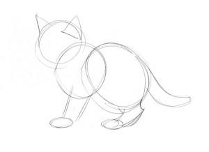 как-нарисовать-кота-поэтапно-2