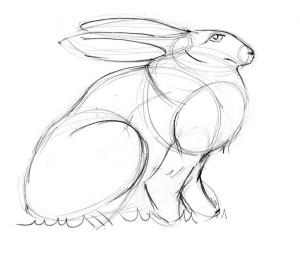 как-нарисовать-зайца-3