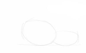 Как-нарисовать-бурундука-карандашом-поэтапно-1