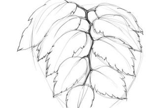 Как-нарисовать-капли-карандашом-поэтапно-3