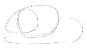 Как-нарисовать-мышку-карандашом-1