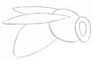 Как-нарисовать-пчелу-1